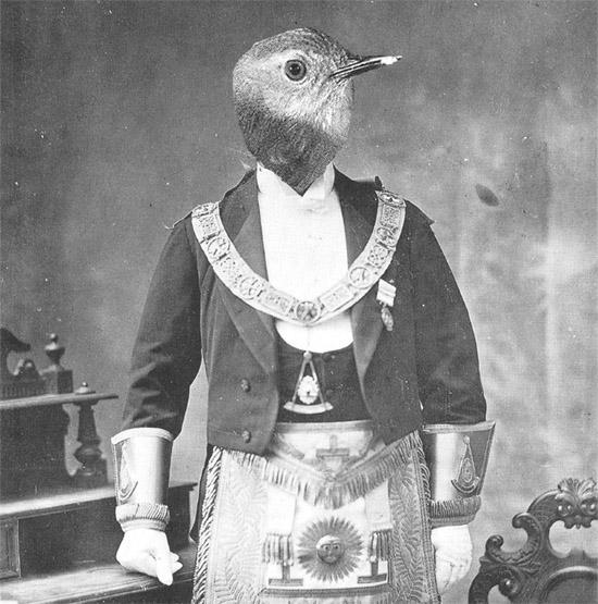 birdheadmason