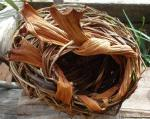Free Form Basket Workshop